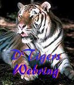 DTigers WebRing
